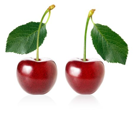 Two red ripe cherries with green leaf isolated on white background.