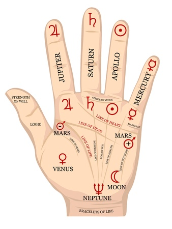 palmistry: Palm with fate lines diagram. Illustration