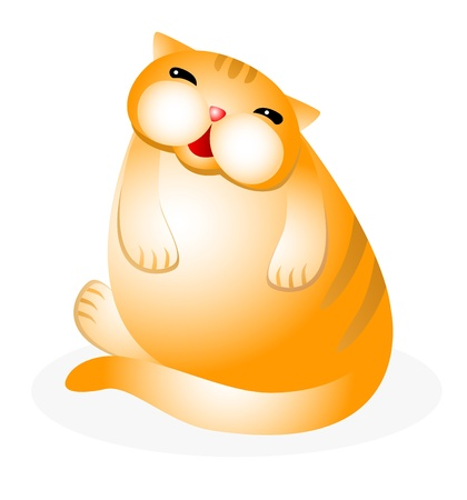 sedentary: Amusing cat sitting isolated on white background.