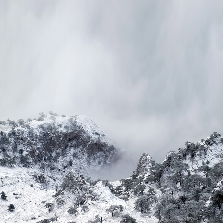 inclement: Snowy mountains with trees and fog. Stock Photo