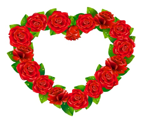 Heart of roses on white background. Vector