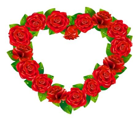 rose frame: Heart of roses on white background.