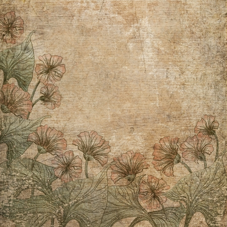 Old scratched paper with flowers background.