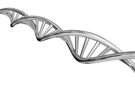 dna chain: DNA model isolated on white background.