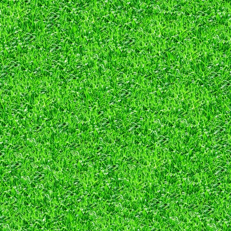 seamlessly: Seamlessly green grass texture background. Stock Photo