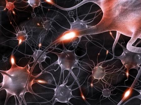 nucleus: 3d rendering illustration of neurons.