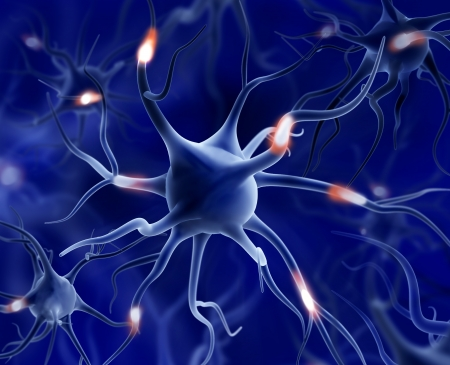 Neurons - 3d illustration  Stock Photo