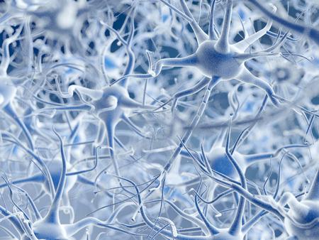 Les neurones. Banque d'images - 35173436