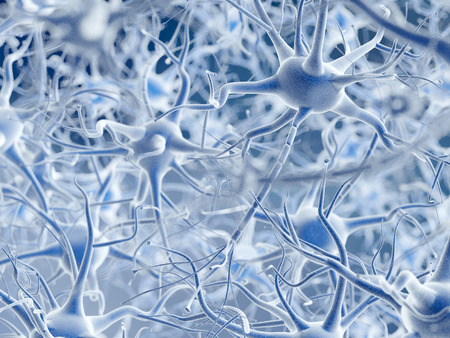 Neurons. Stock Photo