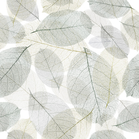 faded: Seamless faded leafs pattern.