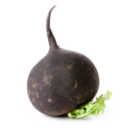 Black radish isolated on white background. Standard-Bild