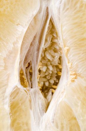 sappy: Citrus fruit core closeup background. Stock Photo