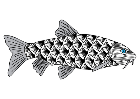 Salmon sturgeon hand drawn skeched vector illustration. Doodle graphic. Object isolated on white Illustration