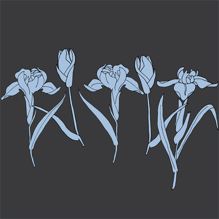 Flower Gladdon Doodle Flourish graphic with ornate pattern.