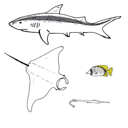 Grey reef shark, manta ray, threadfin butterflyfish and cornefish hand drawn. Coral reef fish. Background illustration.