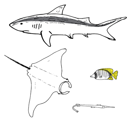 Grey reef shark, manta ray, threadfin butterflyfish and cornefish hand drawn. Coral reef fish. Background illustration.