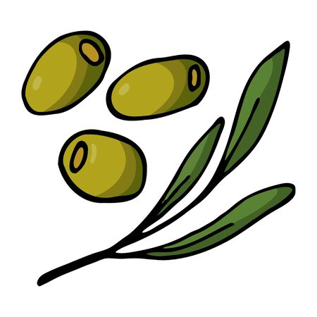 Green three olives and twig with leaves. Hand drawn outline doodle icon. Colorful isolated on white background. Vector illustration for greeting cards, posters, patches, prints for clothes, emblems. 일러스트