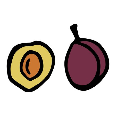 Plum with kernel. Hand drawn outline doodle icon. Colorful isolated on white background. Vector illustration for greeting cards, posters, patches, prints for clothes, emblems.
