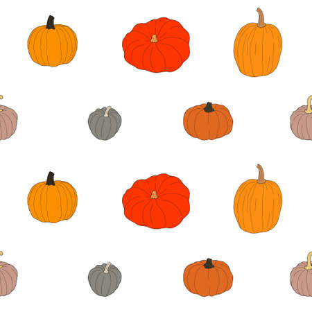 Pumpkin colorful seamless pattern. Vector illustration isolated on white background. Healthy vegetarian food. Doodle style. Decoration for greeting cards, posters, patches, prints for clothes, emblems Çizim