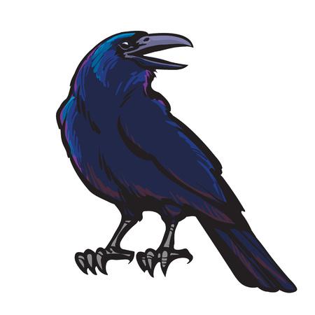 Corbeau noir de bande dessinée isolé sur fond blanc. Vieux et sage oiseau. Personnage de Raven Halloween.