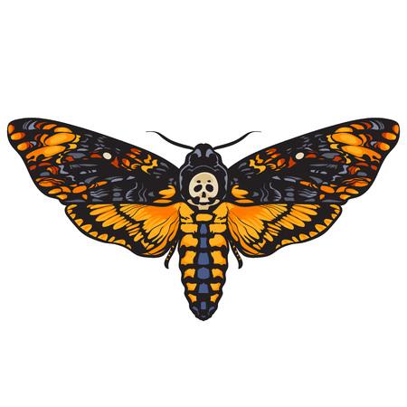 Totenkopf-Schwärmer. Halloween Dekoration. Übergeben Sie die gezogene Vektorillustration, die auf weißem Hintergrund lokalisiert wird. Buch. Vektorgrafik
