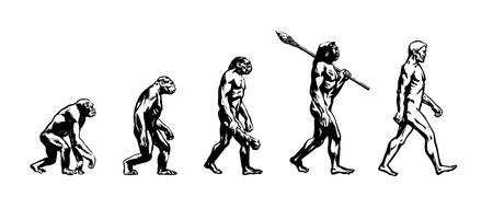 Ewolucja człowieka Ilustracje wektorowe