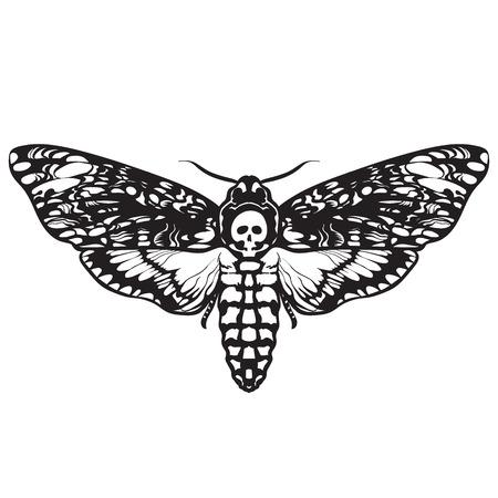 Schädelmotte Schmetterling. Totenkopf-Falkenmotte Vektorgrafik