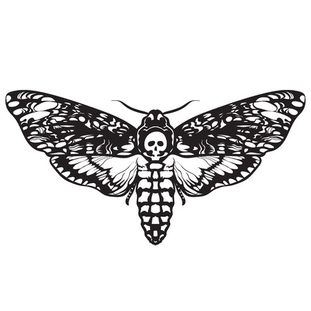 Skull moth butterfly. Death head hawk moth Иллюстрация
