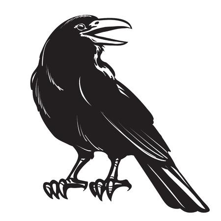 Cuervo negro gráfico aislado sobre fondo blanco.