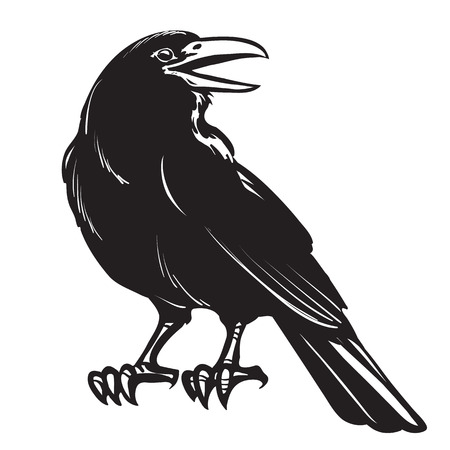 Grafische schwarze Krähe lokalisiert auf weißem Hintergrund
