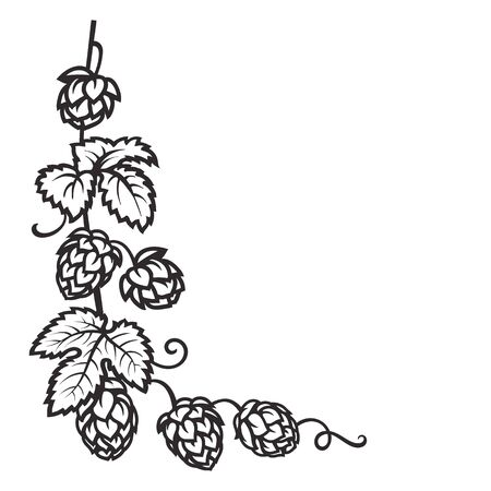 Branch of hops. Hop cones with leaf icon. Corner frame. Hand drawn vector illustration on white background.