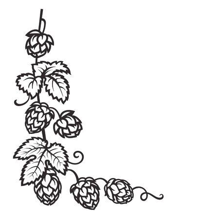 Zweig des Hopfens. Hopfenzapfen mit Blattsymbol. Eckrahmen. Handgezeichnete Vektor-Illustration auf weißem Hintergrund. Vektorgrafik