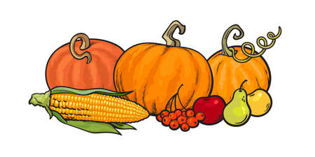Happy Thanksgiving calligraphy and cartoon Thanksgiving autumn food pumpkins, corn, berries, pear and apples. Harvest festival greeting card. Vector illustration isolated on white background