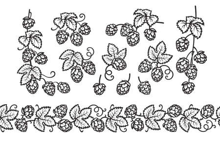 Hop branches with cones and leaves seamless border. Brewery, beer festival, bar, design elements in vintage engraving style. Hand drawn vector illustration isolated on white background.