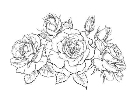 Bouquet of roses, blooming flowers, buds, leaves and stems hand drawn vector illustration. Romantic decorative elements for tattoo, greeting card, wedding invitation Illusztráció
