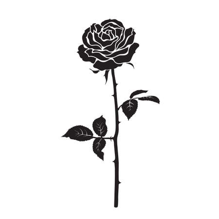 Black silhouette of rose flower with leaves and stem isolated on white background. Vector illustration.