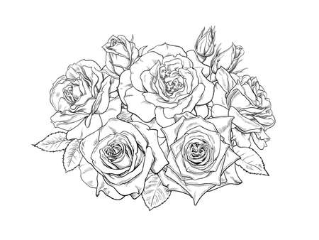 Bouquet of roses, blooming flowers, buds, leaves and stems hand drawn vector illustration. Black and white detailed line art. Romantic decorative elements for tattoo, greeting card, wedding invitation