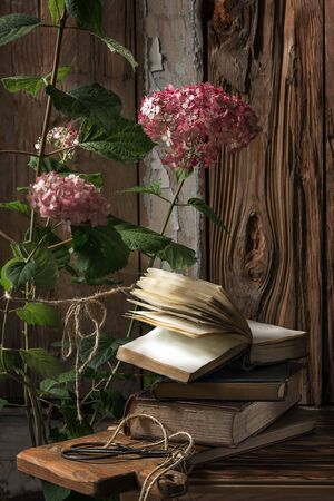 Vintage still life with books, scissors and pink hydrangea flowers