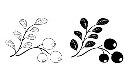 branch of cowberry - black vector