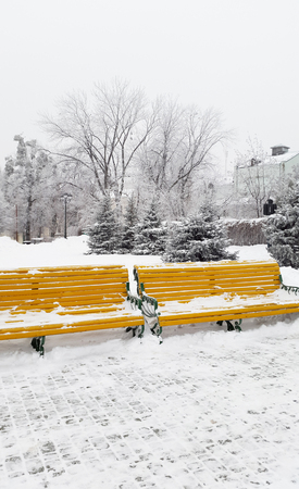 benches with snow on the Kharkiv street - winter