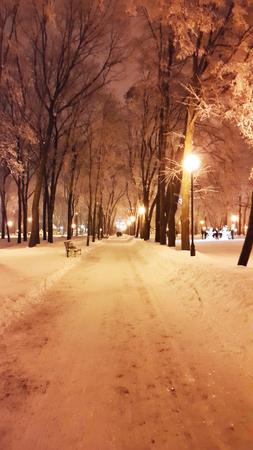 pavement in Kharkiv park at winter - January 2017 Ukraine
