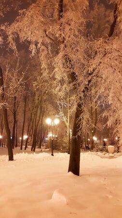 streetlights at evening in Kharkiv winter park