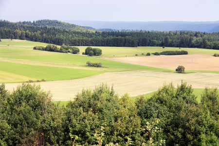 bright green fields on summer landscape with trees in Baden-Wurttemberg Stock Photo - 95456450