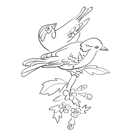 silhouette of birds sit on branch with flowers - vector couple Illustration