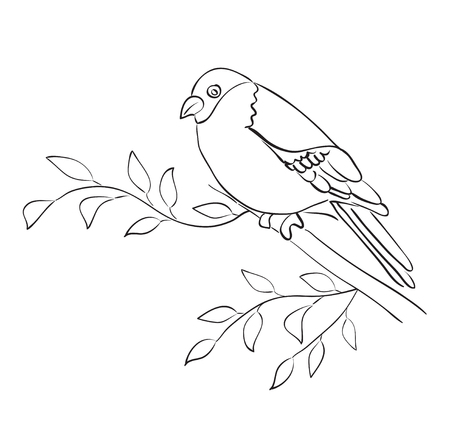 silhouette of bird sit on branch - vector sparrow Illustration