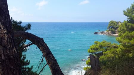 blue and green water of Adriatic sea and green pines in Montenegro at summer