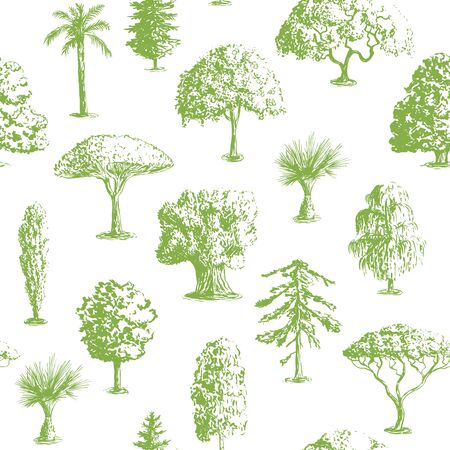 cypress: Seamless vector hand drawn tree pattern. Oak, olive, apple-tree. Pine, spruce, maple, dragon blood Brahea cypress acacia palm