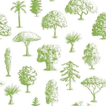 cypress tree: Seamless vector hand drawn tree pattern. Oak, olive, apple-tree. Pine, spruce, maple, dragon blood Brahea cypress acacia palm