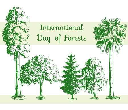 palmetto: International Day of Forests card. Vector hand drawn sketch tree pattern. Sequoia, palmetto, willow, spruce. Illustration