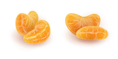 Ensemble de tranches réalistes de mandarine ou de mandarine. Segments d'agrumes pelés isolés sur fond blanc. Sections oranges. Illustration vectorielle photoréaliste pour l'emballage alimentaire.